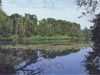 Camping De Laarse Heide